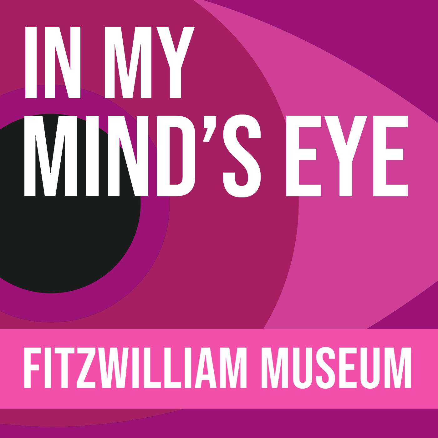 In My Mind's Eye: the museum explored